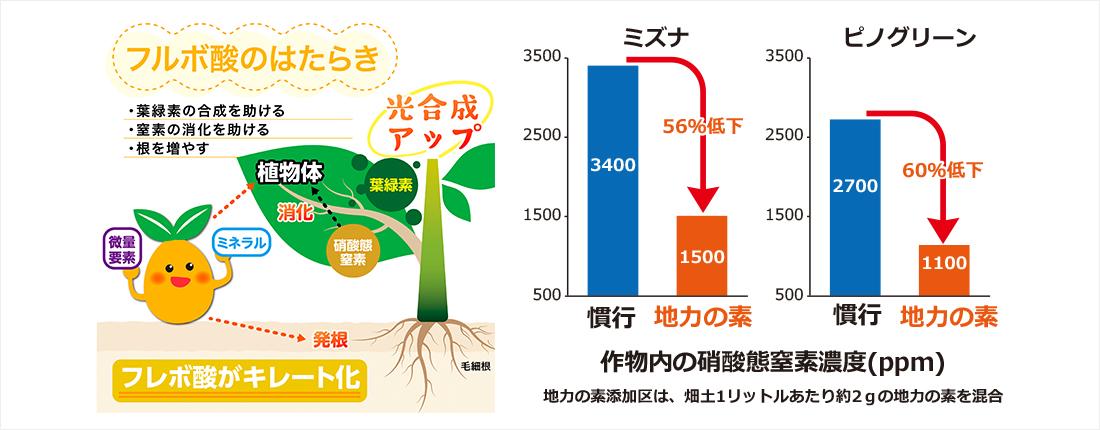 植物に大切なフルボ酸のはたらき