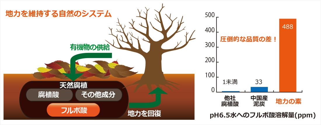フルボ酸豊富な天然腐植